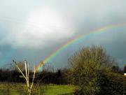 4th Mar 2017 - Rainbow from bedroom
