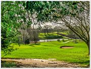 6th Mar 2017 - The Golf Course,Harlestone