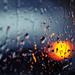 The Light in the Rain