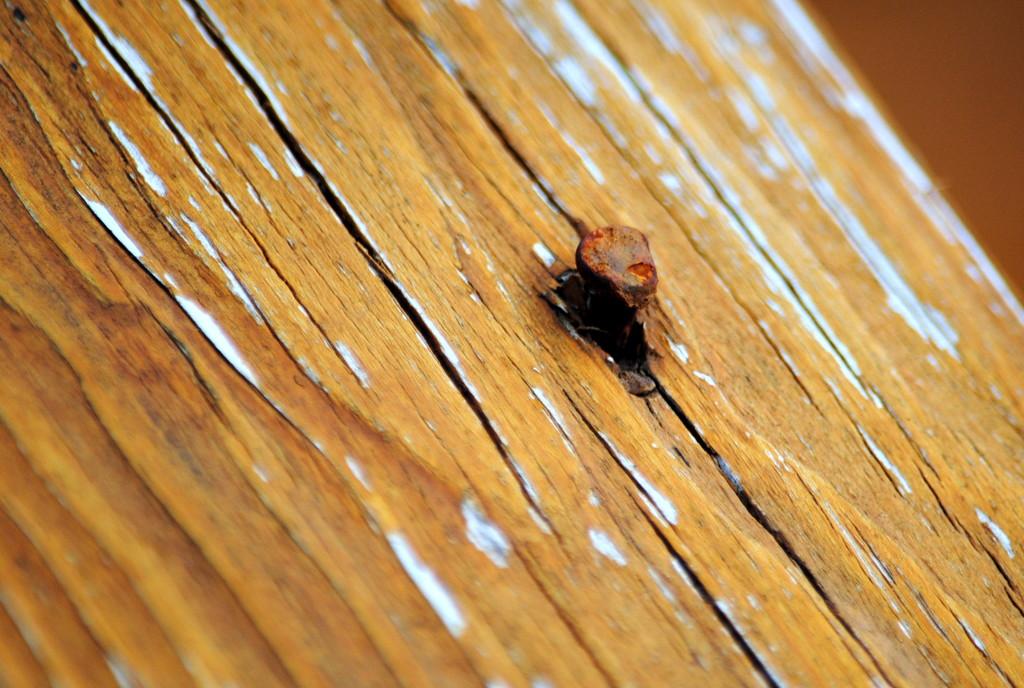 The Rusty Nail by genealogygenie