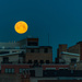 Early Morning Moon Over Fulton Street by taffy