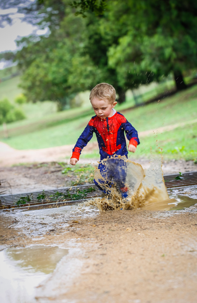 Puddles and Mud by purdey