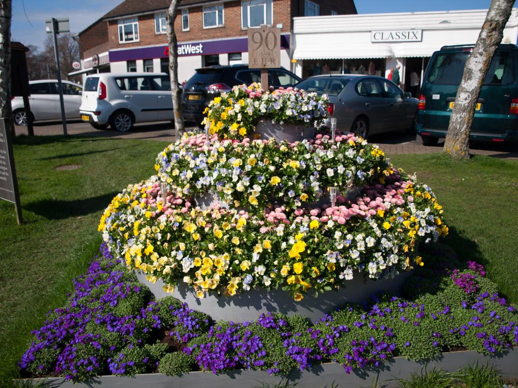 Rustington flowers by josiegilbert