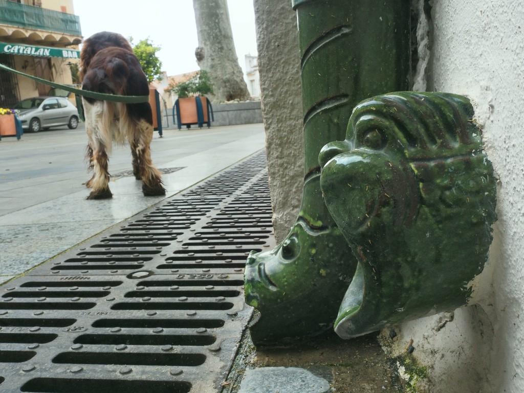 Bar, car, dog and dragons by laroque