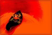 21st Mar 2017 - A Little Froggy Floating in a Sea of Orange