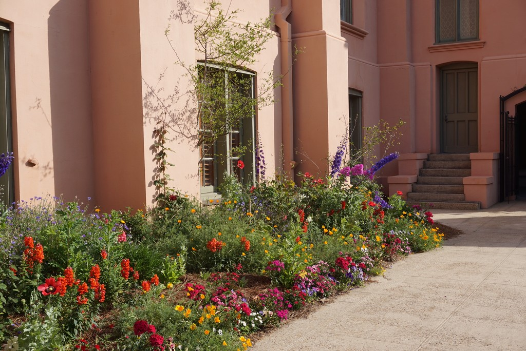 Spring Flowers in New Orleans by allie912