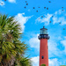 Jupiter Inlet Lighthouse by danette
