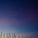 masts & moon
