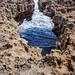 Blowing Rocks Preserve by danette
