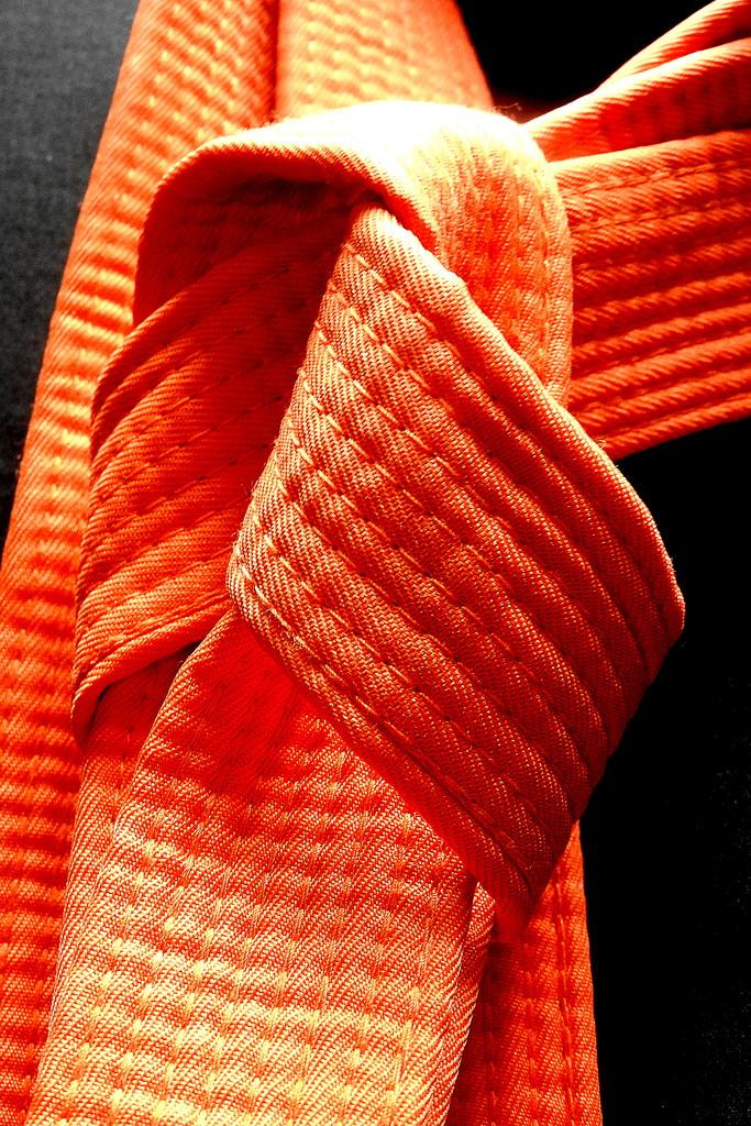 Orange Belt by homeschoolmom