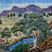 30th Mar 2017 - Mural On The Hill, Port Augusta_DSC6317