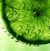 30th Mar 2017 - Lime