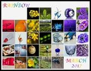 31st Mar 2017 - 2017-03-31 - Rainbow March 2017
