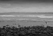 1st Apr 2017 - Surfers