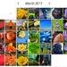 Rainbow Month by yorkshirekiwi