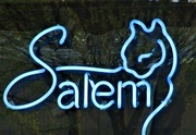 31st Mar 2017 - Salem