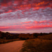 Fiery Sky  by purdey