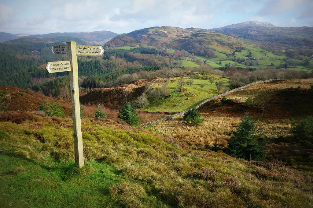 The Precipice Walk by darrenboyj