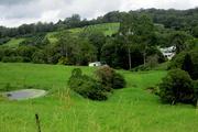 3rd Apr 2017 - Farmland on the edge of my town