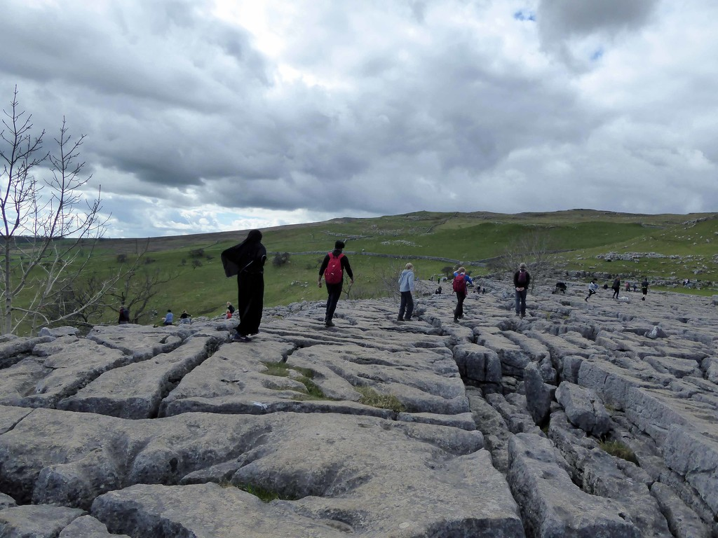 Limestone Pavement by cmp