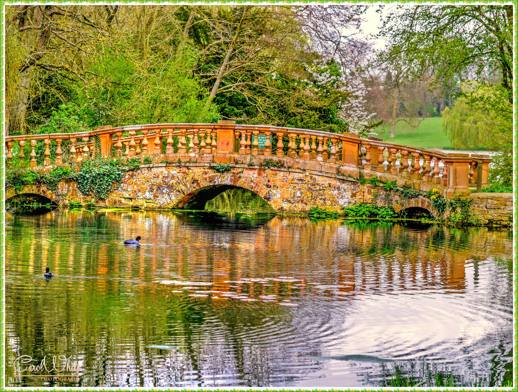 Bridge, Castle Ashby by carolmw