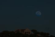5th Apr 2017 - Blue Moon