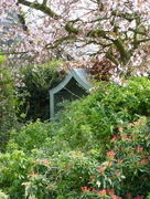 1st Apr 2017 - springtime in our garden