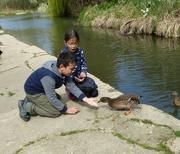 7th Apr 2017 - Lana and Jak feeding the ducks