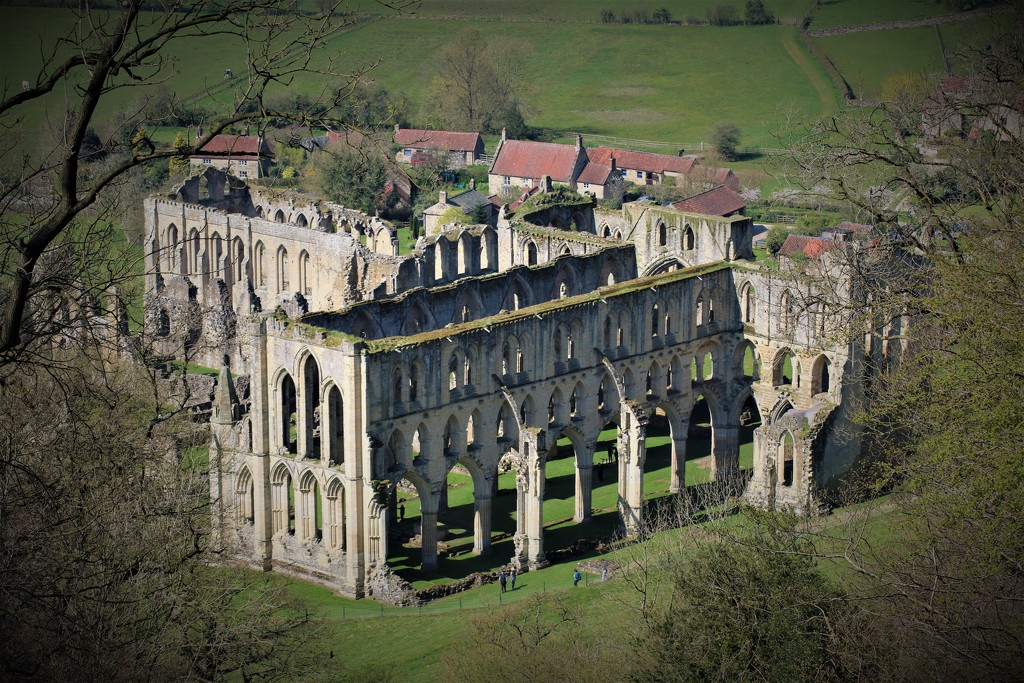 Rievaulx Abbey by phil_sandford