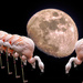Moon Worship by Weezilou