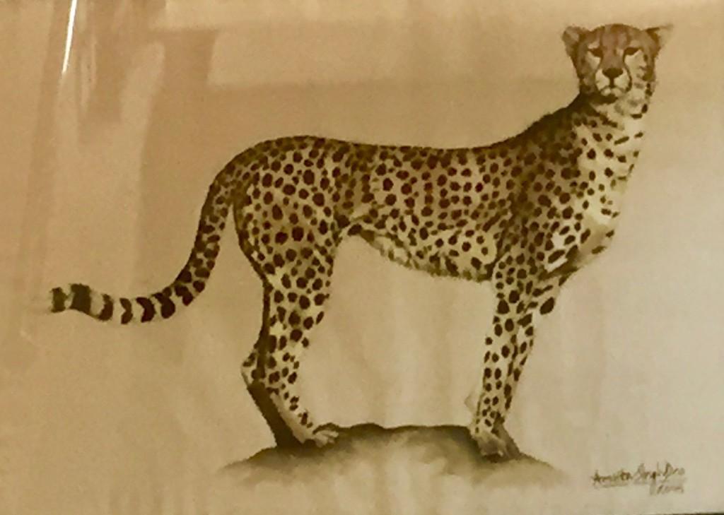 The leopard by veengupta