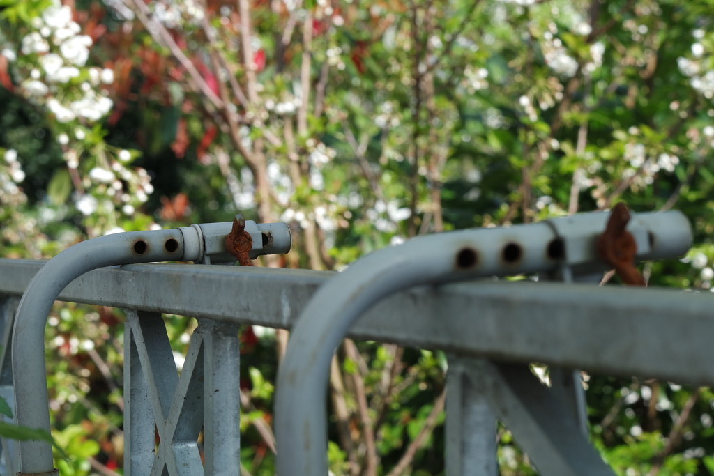 Rust by toinette
