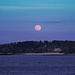 Full Pink Moon Over Cushing Island by dianen