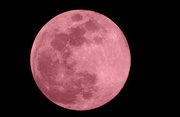 10th Apr 2017 - Pink Moon