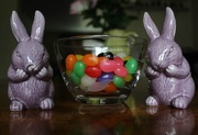 11th Apr 2017 - Bunnies with jelly beans