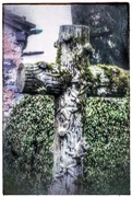 13th Apr 2017 - This cross caught my eye in the graveyard of the church at Grasmere