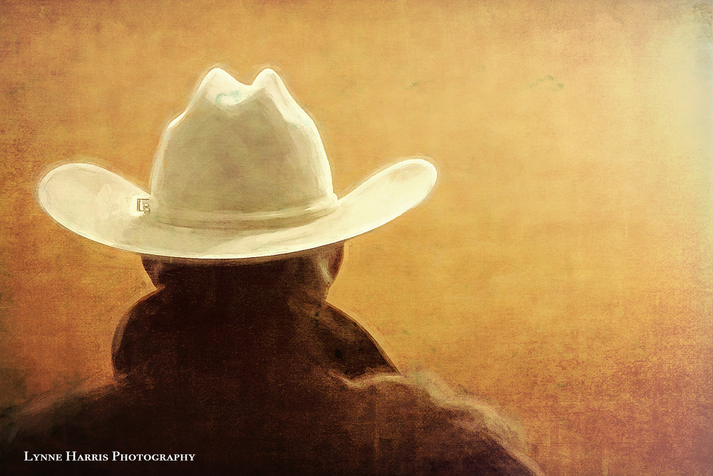 Painted Cowboy by lynne5477