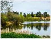 14th Apr 2017 - Ravensthorpe Reservoir