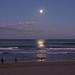 Moonlight Walk Along the Beach by terryliv