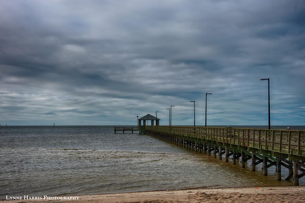 Fishing Pier  by lynne5477