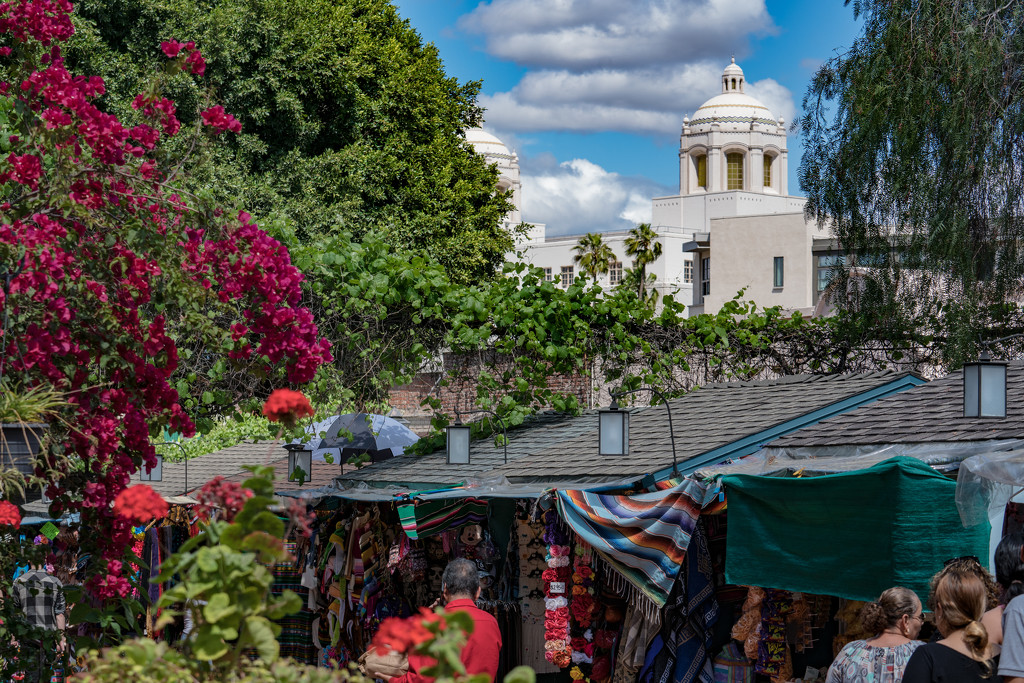 Olvera Street in Los Angeles by stray_shooter