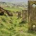 Baildon Moor by shepherdman