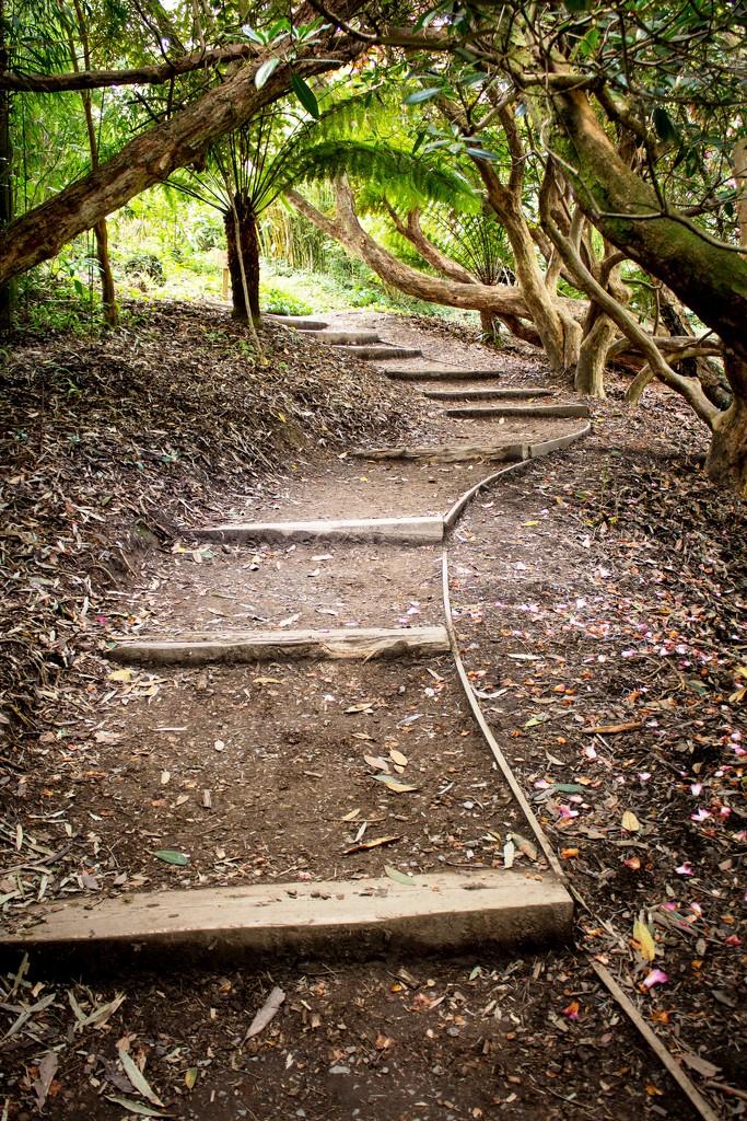 Uphill struggle ahead by swillinbillyflynn