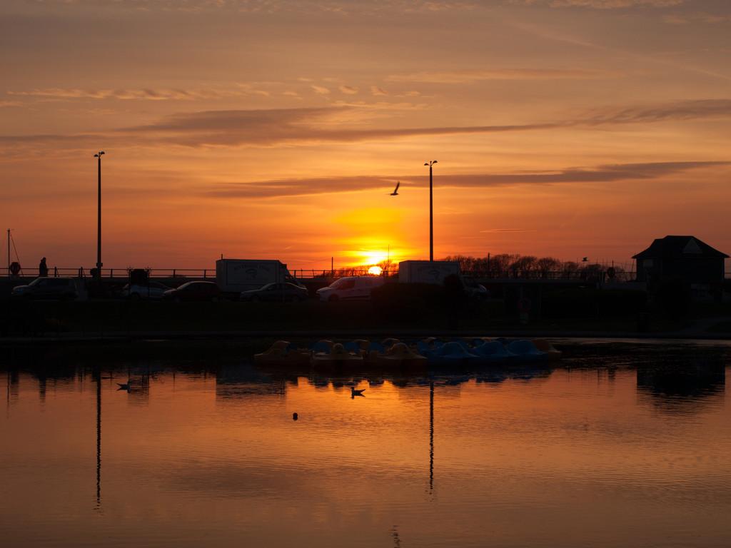Oyster Pond by josiegilbert