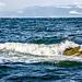 Waves by elisasaeter