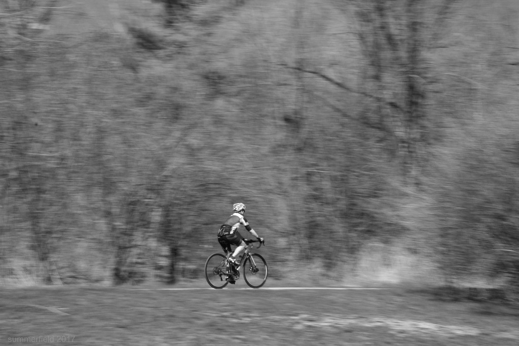 panning the cyclist by summerfield
