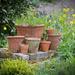 Jumble of Flower Pots by dorsethelen