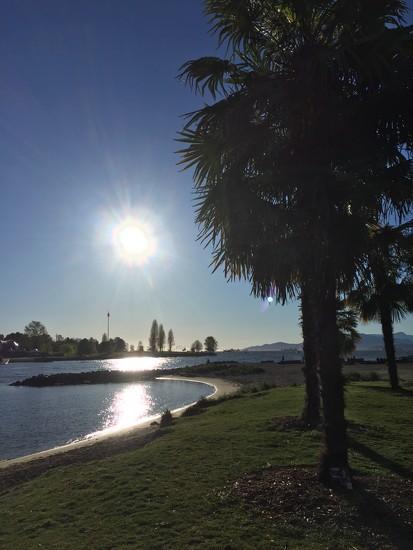 After work sunshine! by bilbaroo