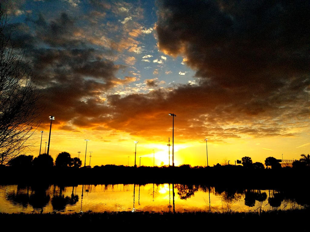 Sunset in the park by danette