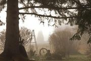 27th Apr 2017 - Foggy backyard